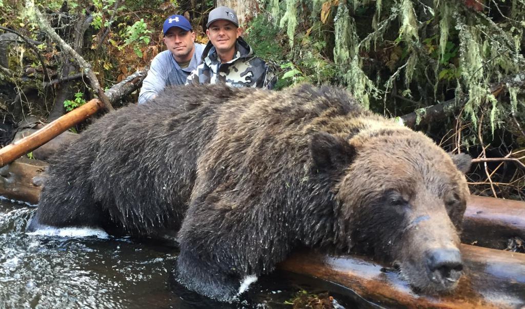 самый огромный медведь в мире фото средства могут являться