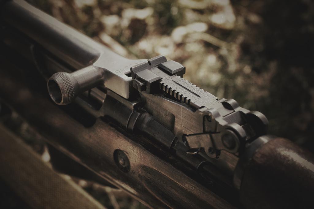 Охотничий карабин СКС, его особенности и преимущества