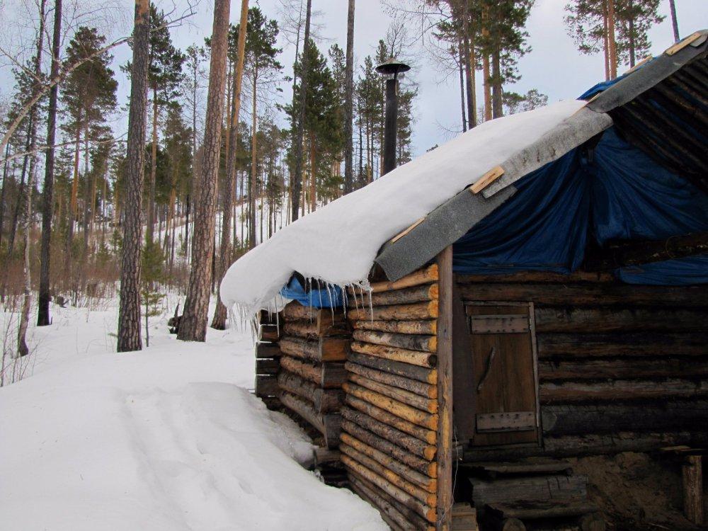 Строим дом в лесу
