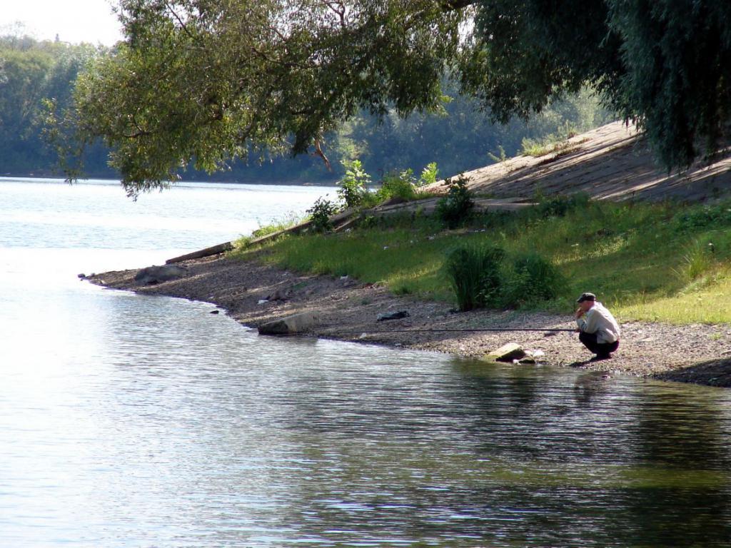 Летняя рыбалка на Лубенском.