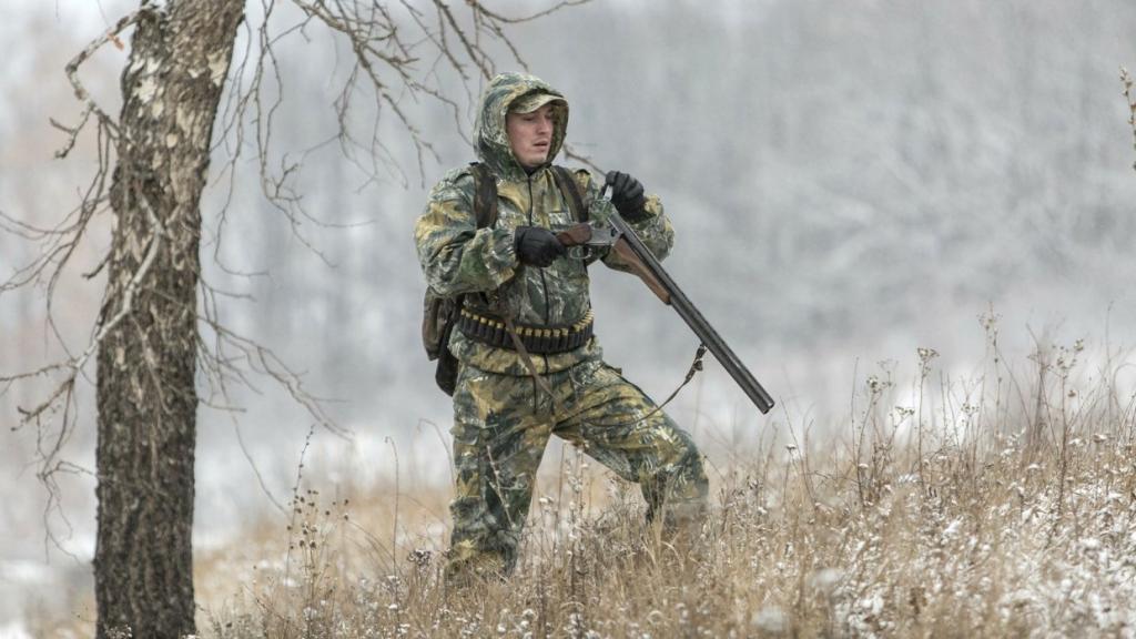 Как стать охотником: куда обращаться, какие документы нужны, приобретение лицензии и разрешение на покупку ружья