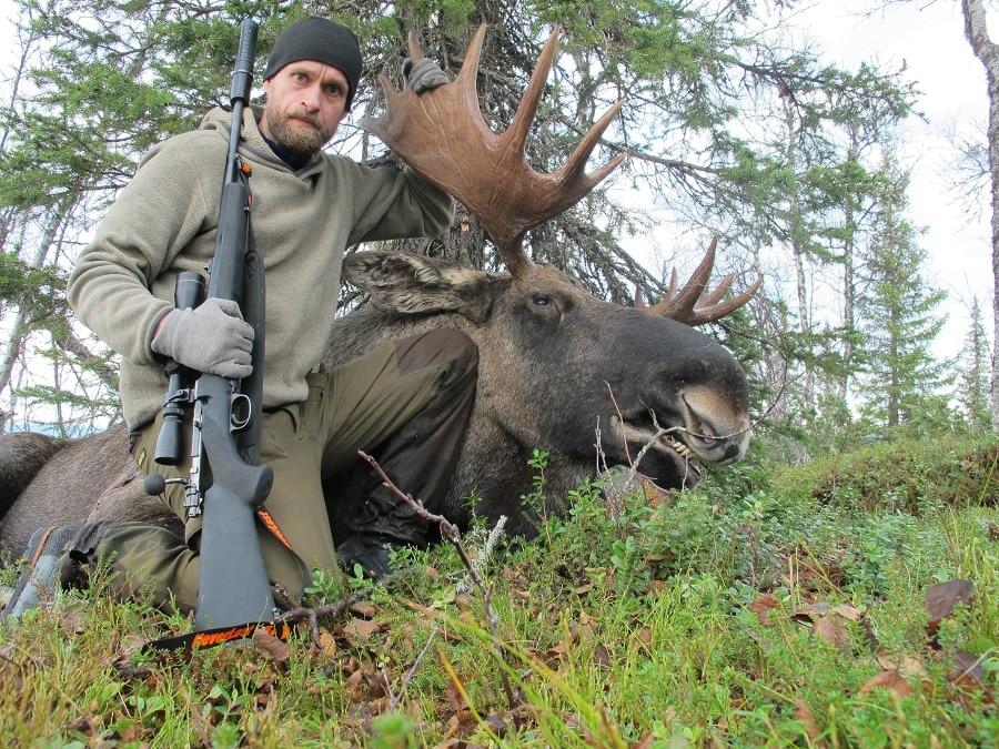 Про валерию, прикольные картинки на охоте на лося