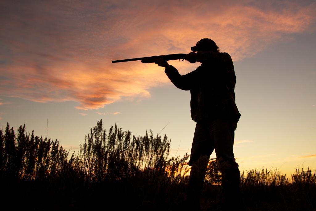 Охотник на закате солнца.
