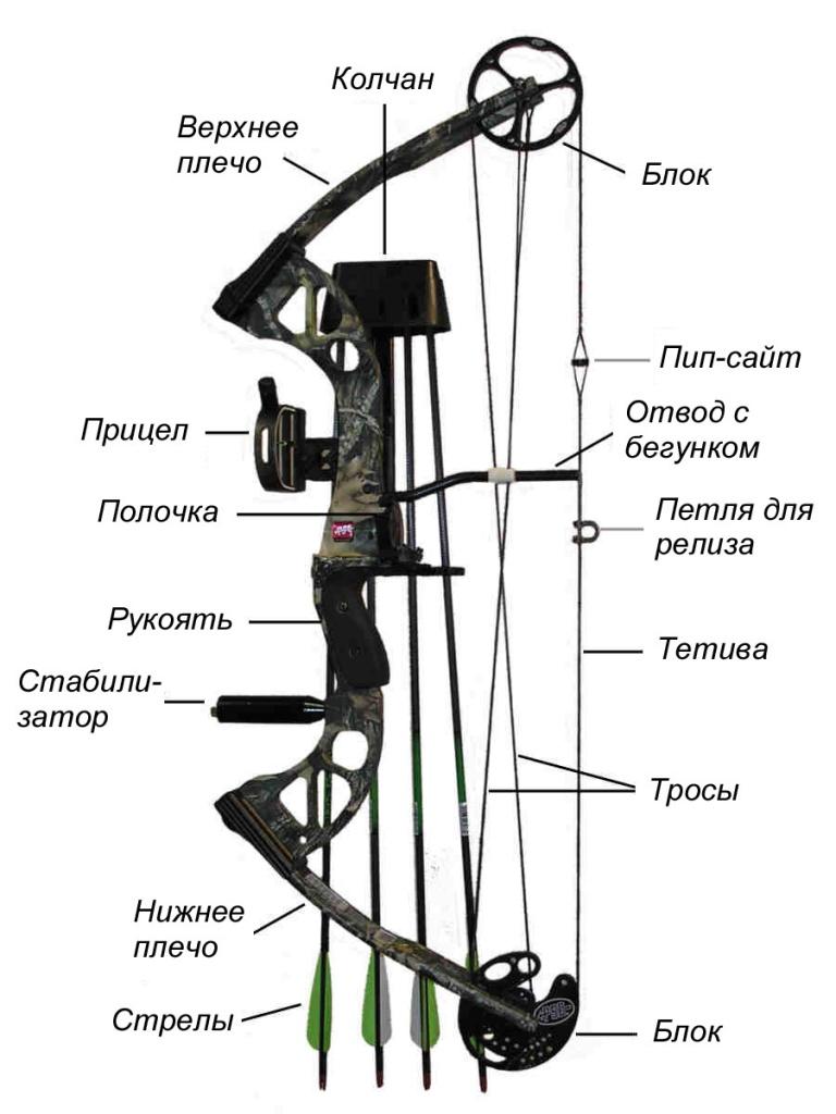 схема лука